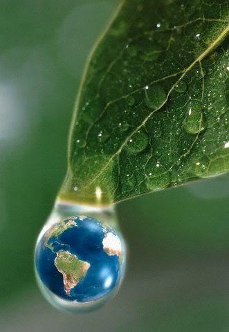 mundo_verde