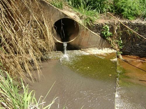 Note, onde o esgoto cai as algas proliferam mais rapidamente. A água do córrego está um pouco mais escura após o lago.