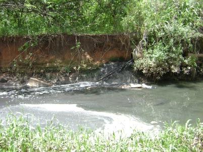 Córrego Palmito em Goiânia