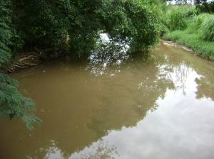 Encontro do córrego Macambira com o Ribeirão Anicuns, Água transparentes encontram águas turvas
