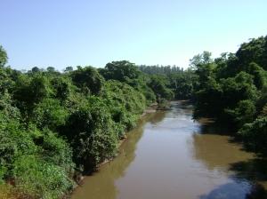 Você sabe como funciona a autodepuração em rios?