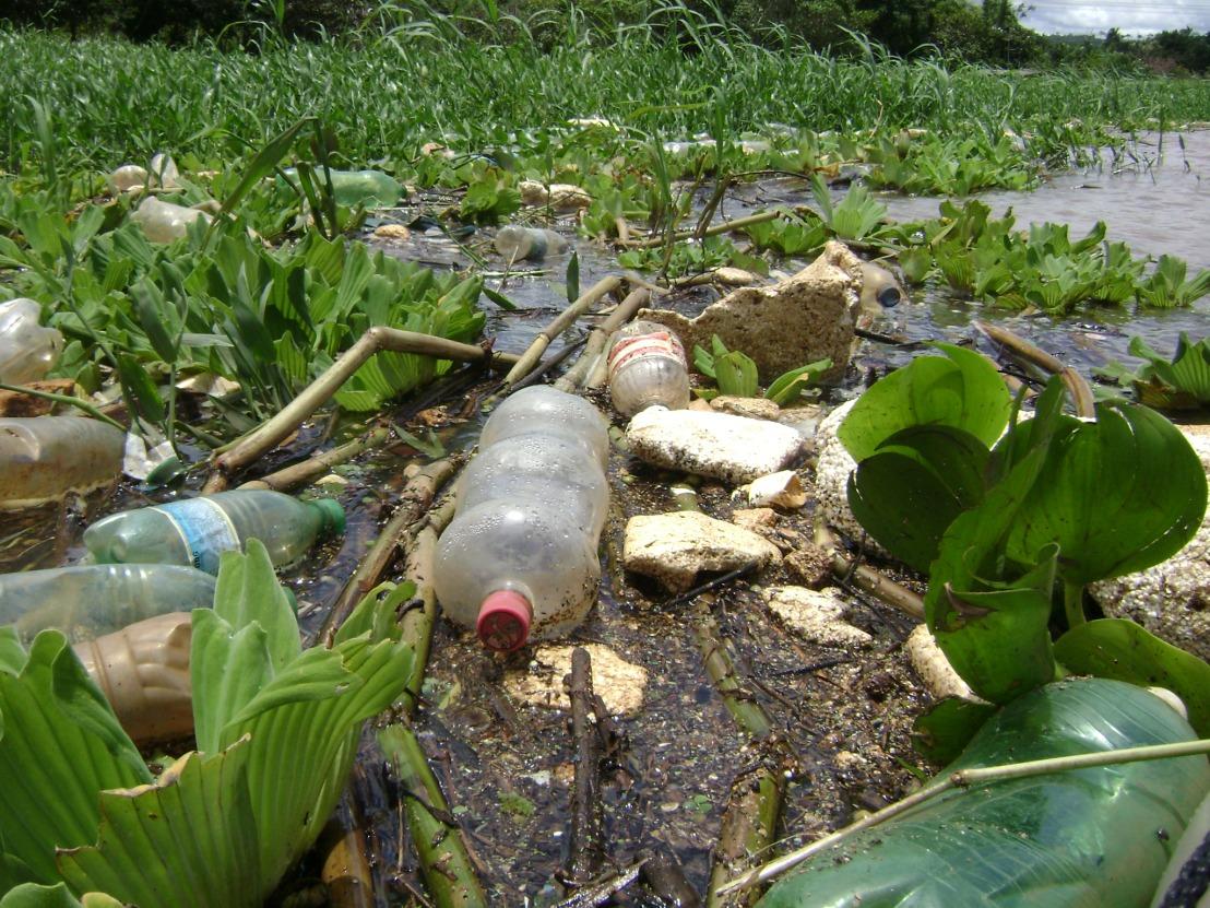 Lixo resultante da carência de programas de educação ambiental e saneamento básico.