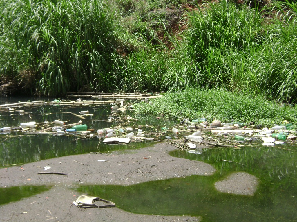 Córrego Palmito