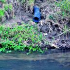 Morador de Aparecida de Goiânia denuncia poluição no córrego Santo Antônio