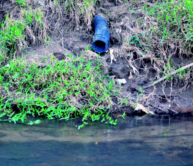 Morador de Aparecida de Goiânia denuncia poluição no córrego SantoAntônio