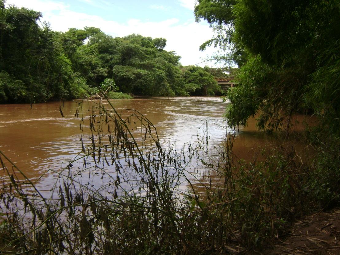 Dia Estadual de Proteção ao Rio Meia Ponte é instituído emGoiás
