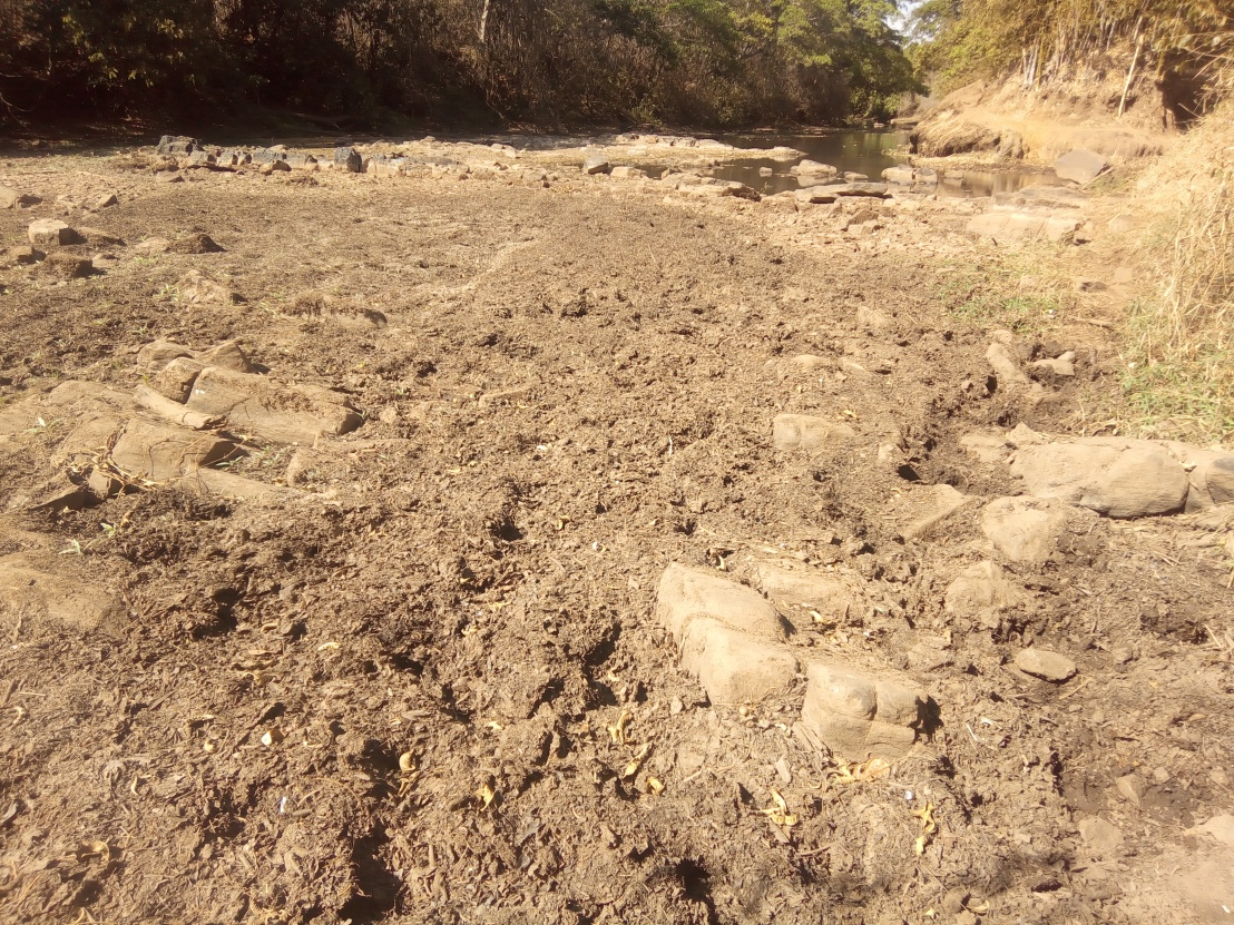 O Rio Meia Ponte nas proximidades da área decaptação.