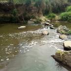 O desperdício das águas provocado pela contaminação por esgotos e a crise hídrica