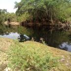 O descaso com o rio Meia Ponte, um rio de águas pretas