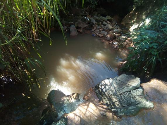 Queda d'água pouco depois da nascente do Água Branca
