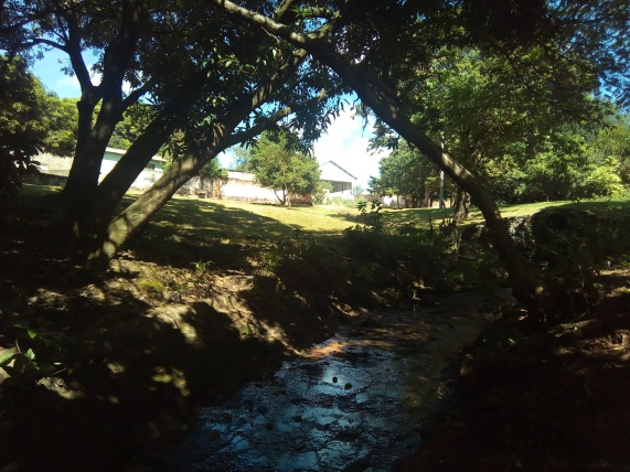 Córrego Água Branca corre canalizado após nascente